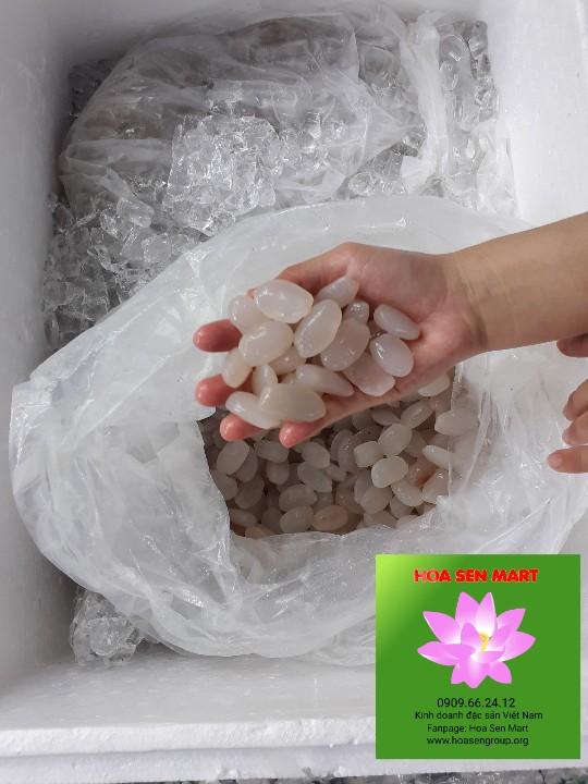 Hạt Đác Rim Phú Yên