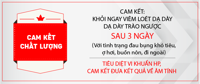 thien an vi cam ket chat luong
