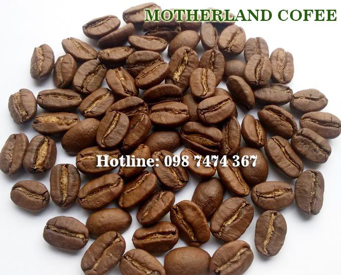 Cà phê hạt rang arabica Cầu Đất gói 500g