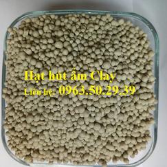 Hạt hút ẩm Clay