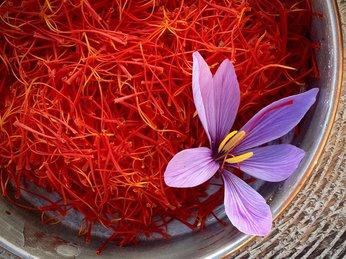 Tác dụng tuyệt vời của nhụy hoa nghệ tây với sức khỏe và sắc đẹp