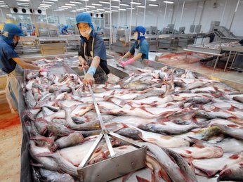 PANGASIUS EXPORTS TO MALAYSIA WENT UP BY 23.6%