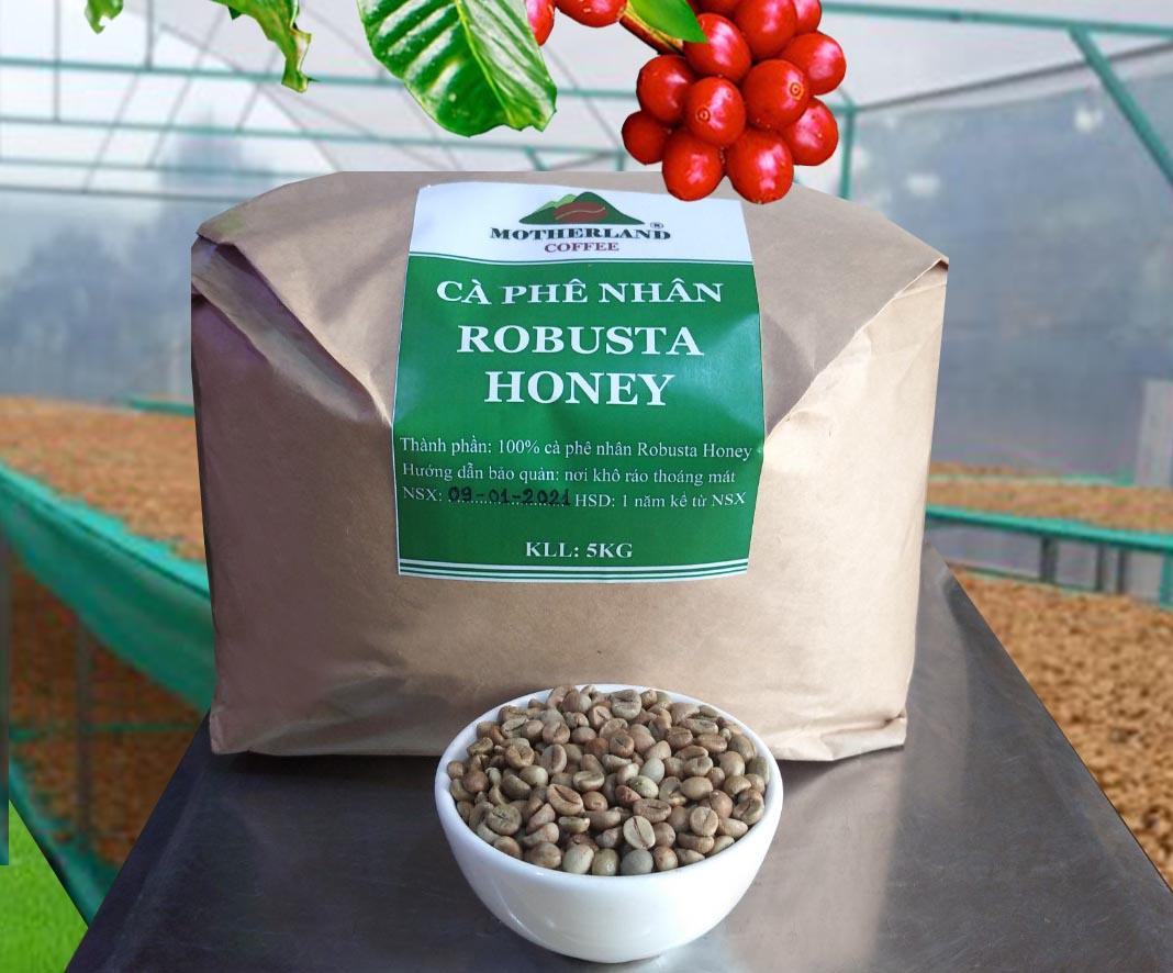 Cà phê nhân xanh Robusta Honey mẻ rang 5kg