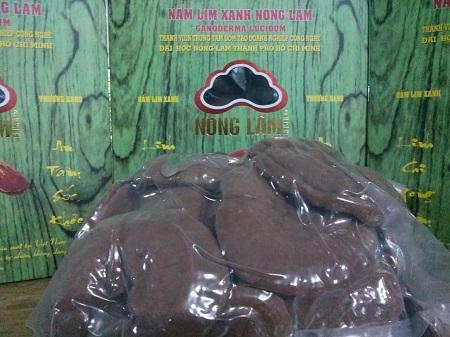 Nấm Lim Xanh Nguyên Tai 500g
