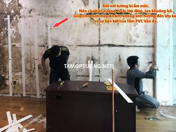 Cách khắc phục Tường nhà bị Bẩn bằng Tấm ốp tường PVC Vân đá Cẩm thạch