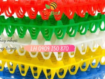 Nguồn cung cấp số lượng lớn khay nhựa – vỉ nhựa đựng trứng giá rẻ