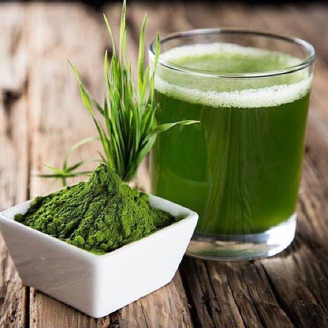 Bột mầm lúa mạch non Nhật Bản Grass Barley nguyên chất 100%