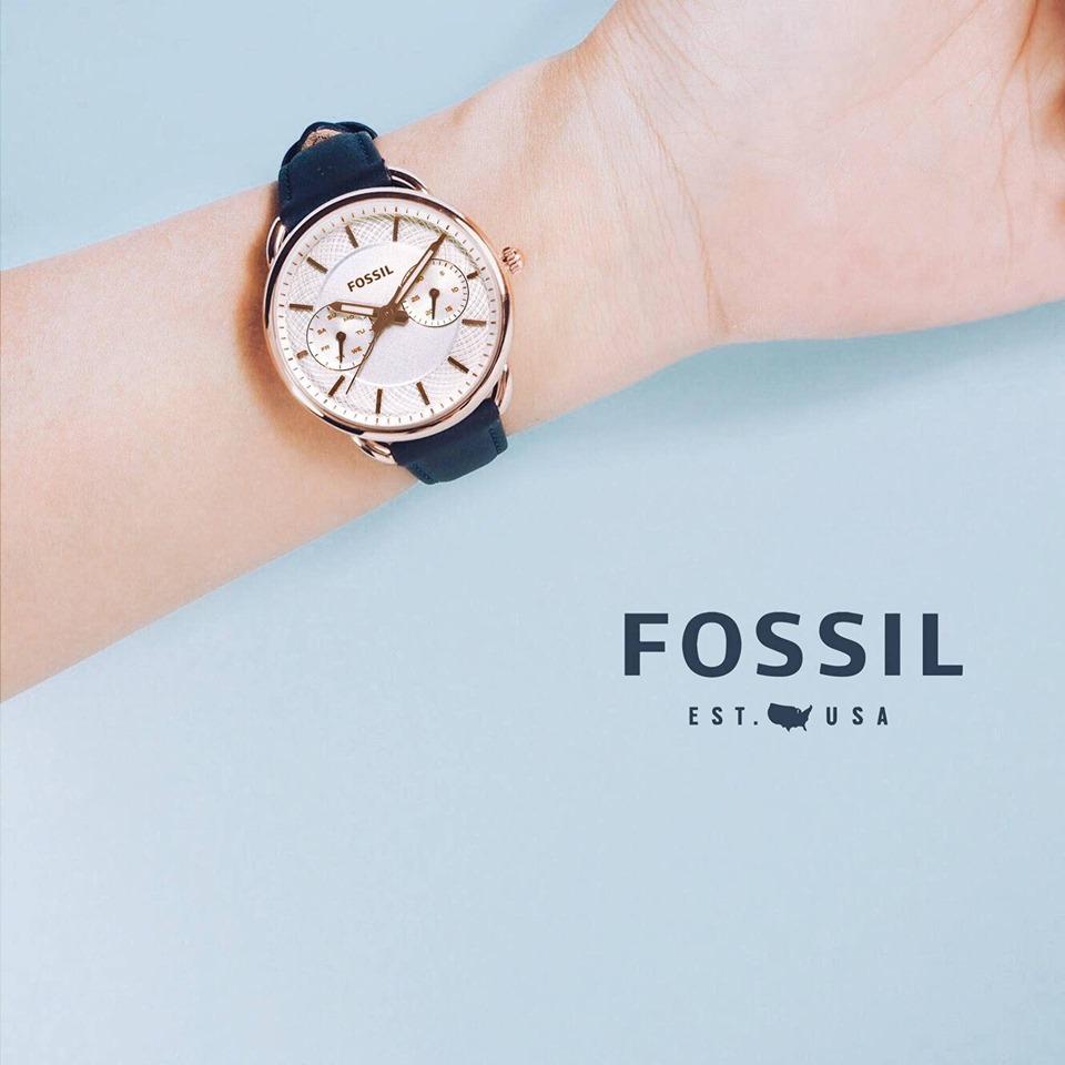 Đồng hồ nữ Fossil Women's Tailor