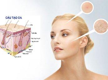 Phần 1: Cấu trúc làn da mặt của bạn? Cách chăm sóc và bảo vệ những vị trí có làn da nhạy cảm, mỏng manh