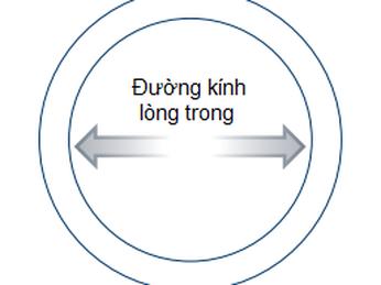Hướng dẫn đo size nhẫn chính xác để có 1 chiếc nhẫn ưng ý