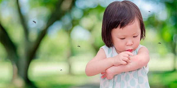 KIỂM SOÁT MUỖI HIỆU QUẢ - Dịch Vụ Diệt Muỗi