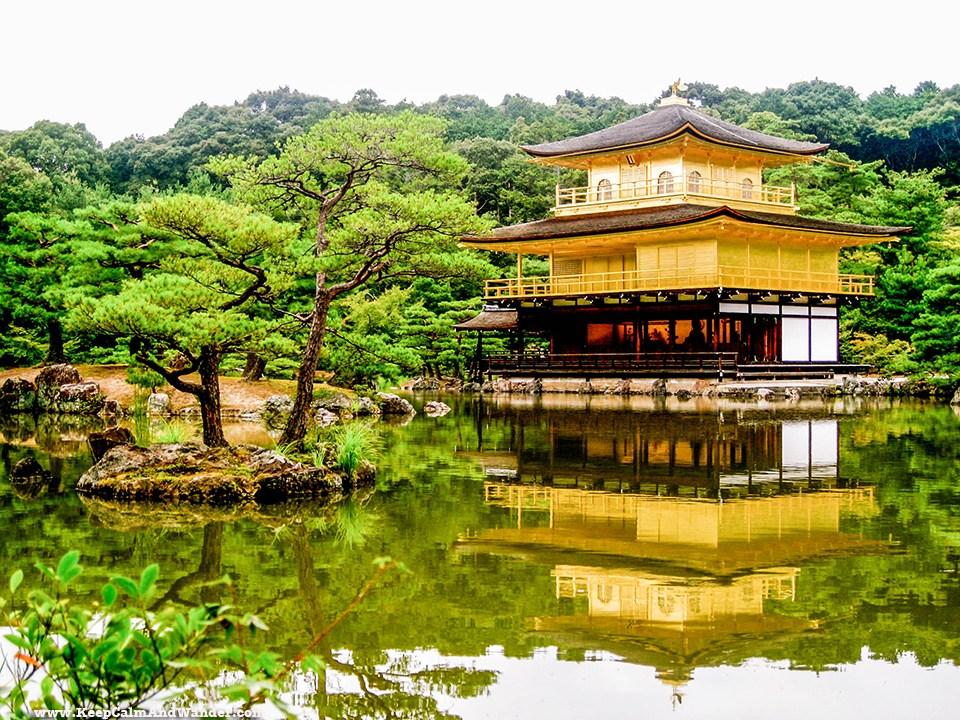 TOKYO - NÚI PHÚ SĨ - OSHINO HAKKAI - KYOTO - OSAKA - CÔNG VIÊN NAI NARA - NAGOYA(5N4Đ)