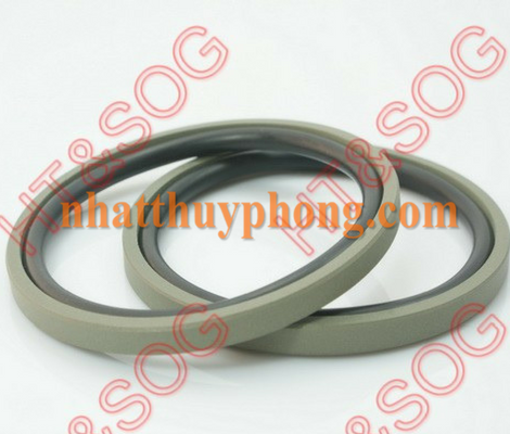 Glyd ring cho piston GSP ( SPGO)
