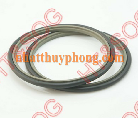 GLYD RING CHO ROD GSR (SPNO)