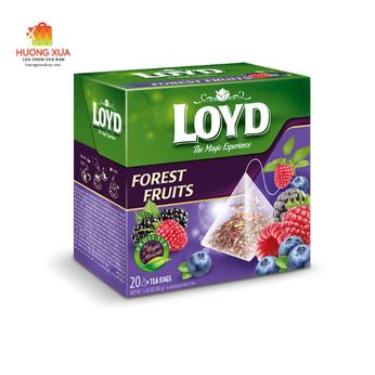 Trà Loyd Forest Fruits