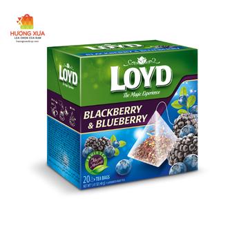 Trà Loyd Blackberry & Blueberry