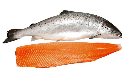 Cá Hồi Tươi Nguyên Con Nhập Khẩy Nauy