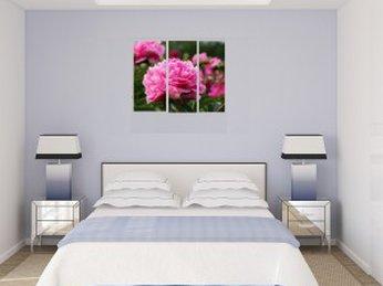 Phòng ngủ thanh bình với thiết kế theo phong cách Nhật Bản
