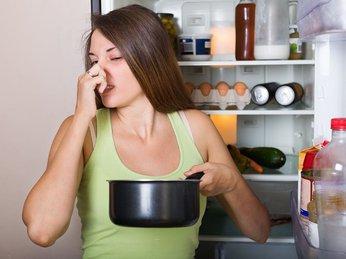 vì sao không nên để đồ ăn trong tủ lạnh quá lâu ?