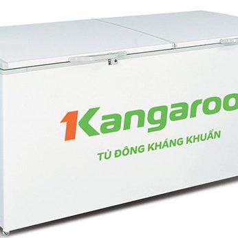Tủ đông kháng khuẩn Kangaroo (1000 lít) KG1009C1