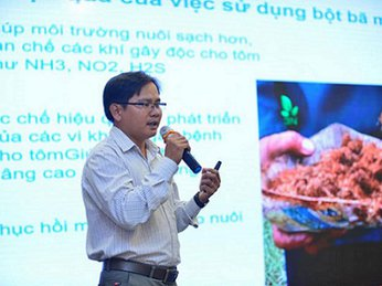 Dùng bã mía lên men với các dòng vi sinh vật có lợi để xử lý môi trường ao nuôi tôm