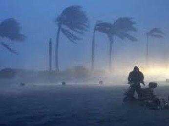 Sản lượng đường của Trung Quốc giảm do siêu bão Rammasun