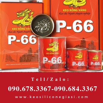 KEO RÔNGF VÀNG P66