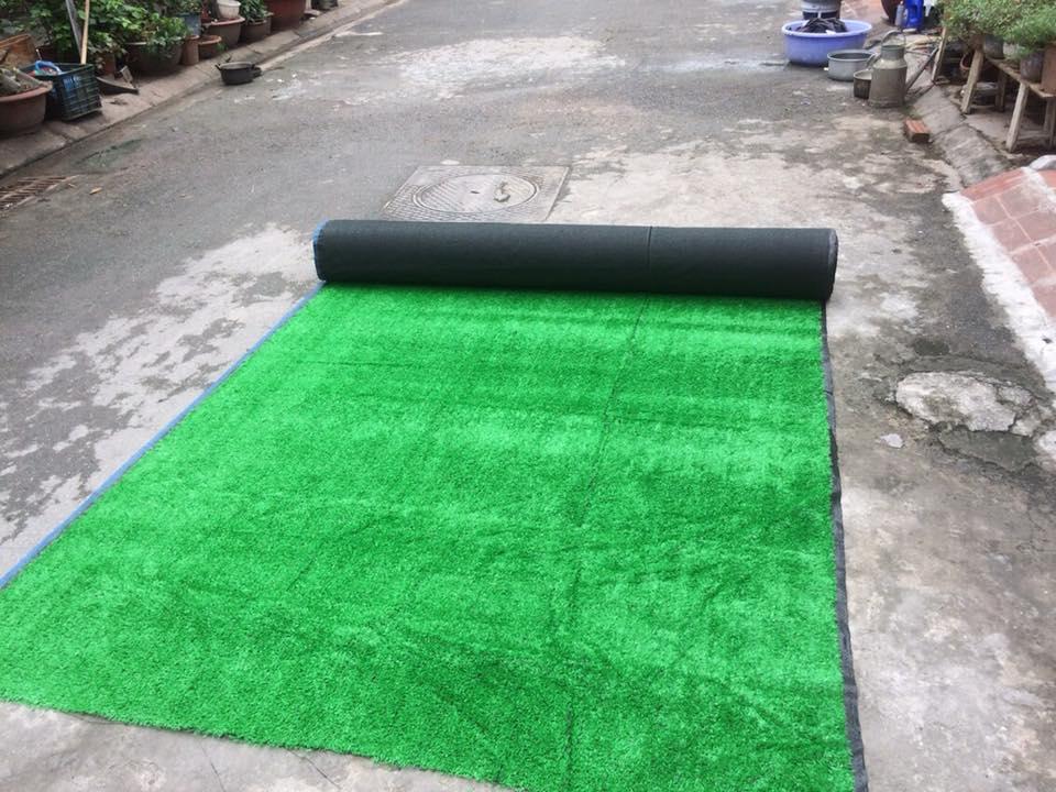 Thảm cỏ 1