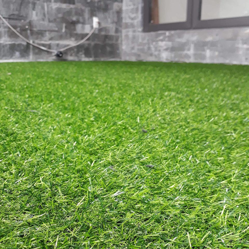 Thảm cỏ YL 3cm