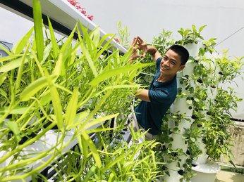 Dịch vụ thiết kế lắp đặc giàn trồng rau sạch thủy canh giá rẻ.