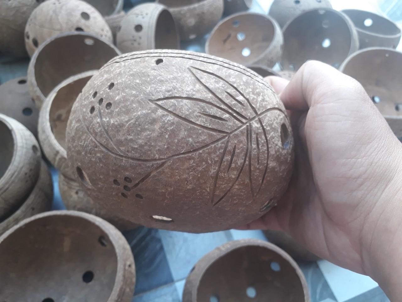 Artistic coconut orchid pots