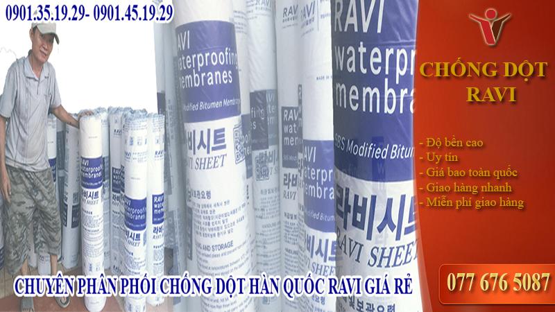 Tấm trải chống dột Hàn Quốc RaVi