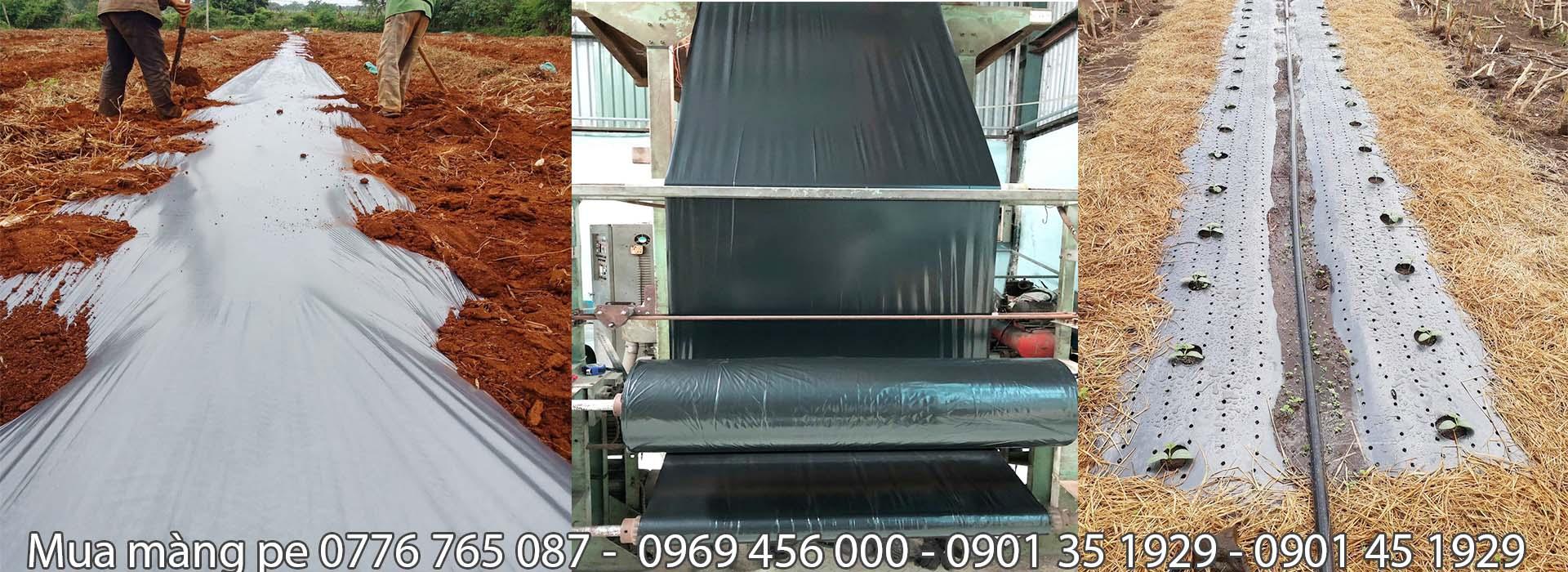 Màng PE đen 2 zem khổ 1M × 400M( Cuộn)