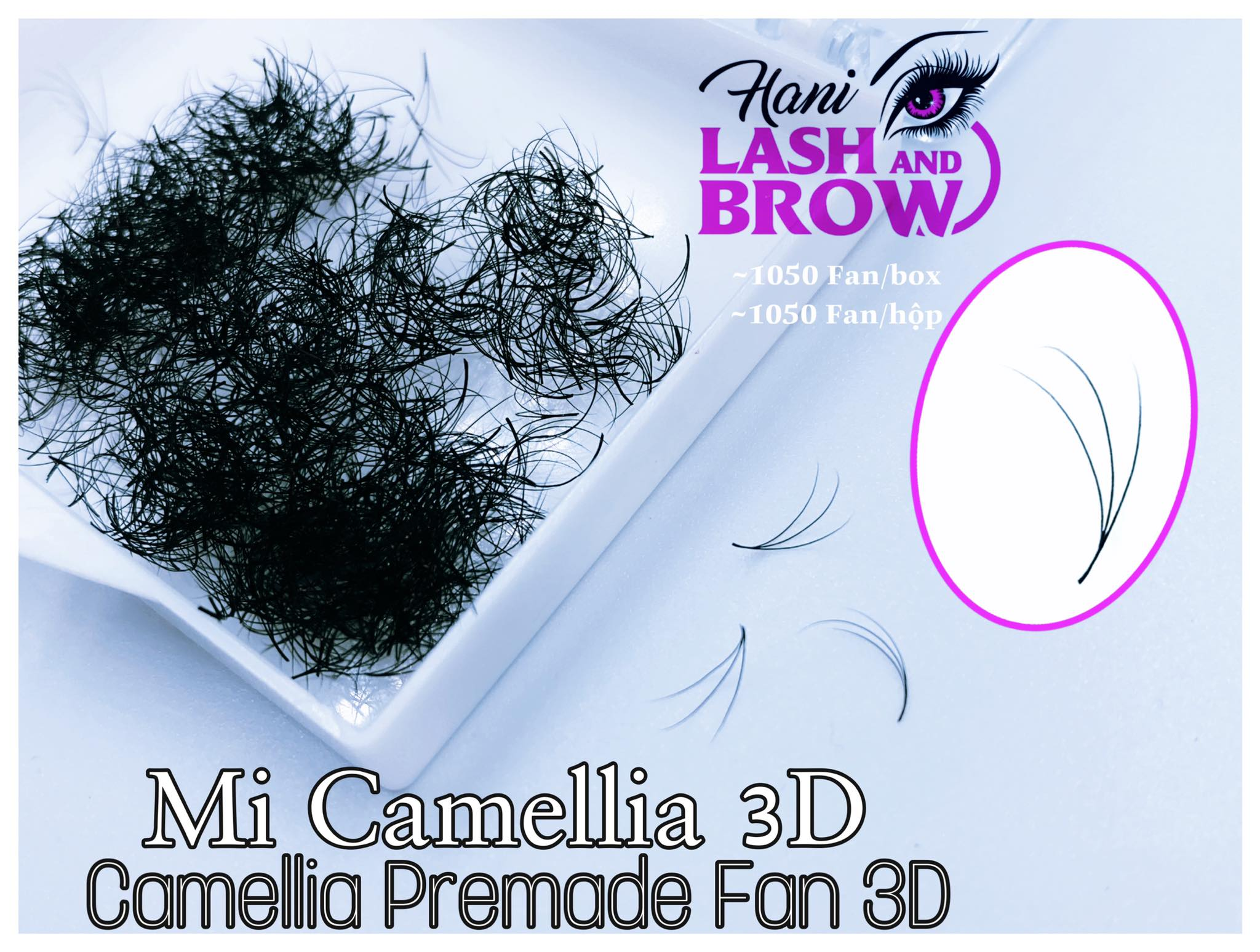 Mi Fan Sẵn Camellia 3D – Nối Đẹp Tự Nhiên Như Mi Thật, Ai Nhìn Cũng Mê