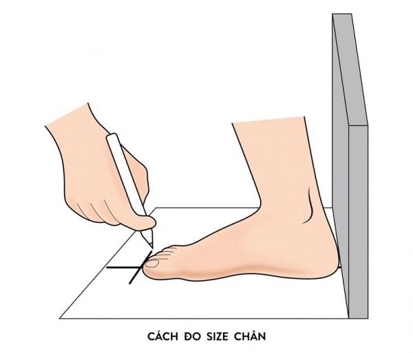 Cách đo size bàn chân