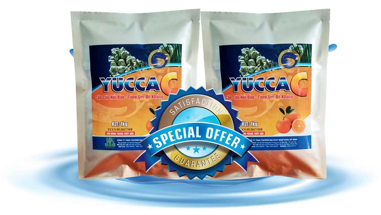 YUCCA C hấp thu khí độc ao tôm