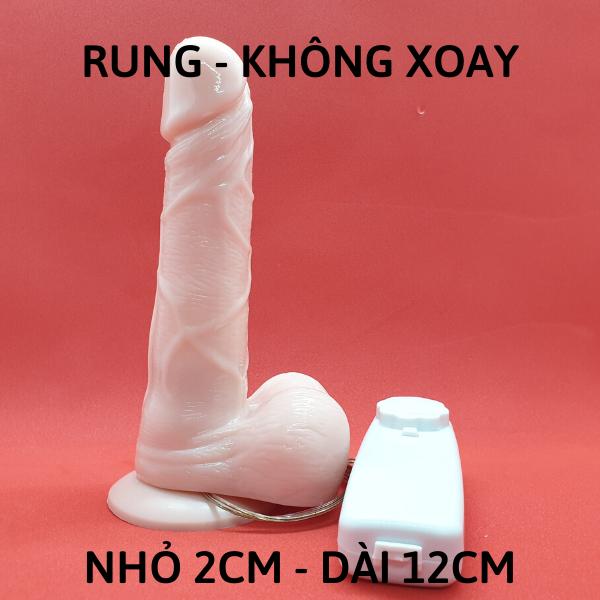 Dương vật hít tường RUNG loại NHỎ - dài 12CM - Tặng gel KY 50k