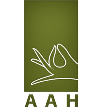 AAH Corp