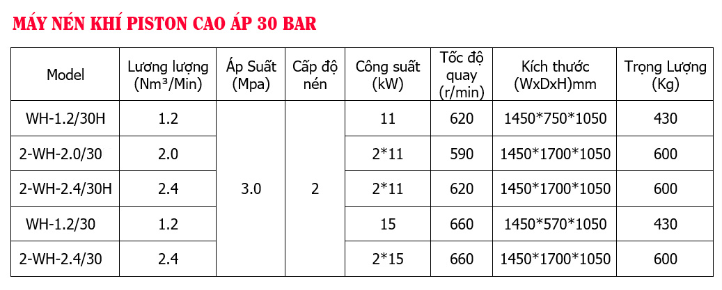 Máy Nén Khí Piston Cao Áp 30 bar