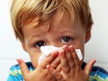 Cách chữa sổ mũi bằng tỏi và cây thuốc dân gian