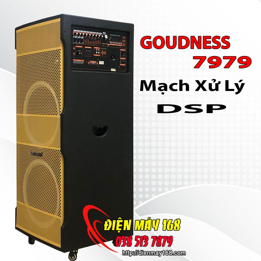 Loa kéo reverb âm thanh vang số goudness 7979