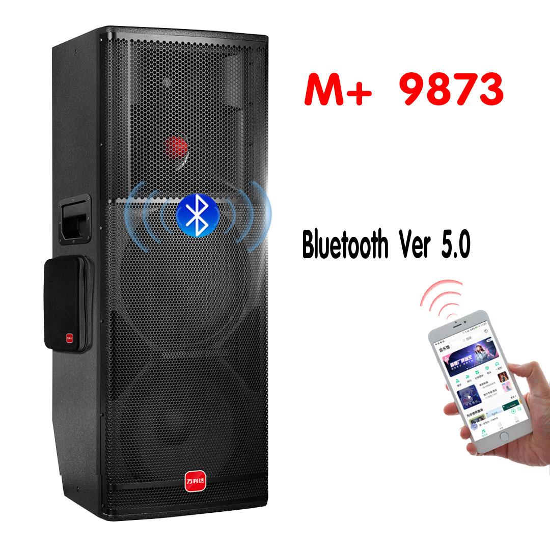 Malata 9873 Loa Kéo Công Suất Lớn Thùng Gỗ Bass Đôi Treble Hỏa Tiễn