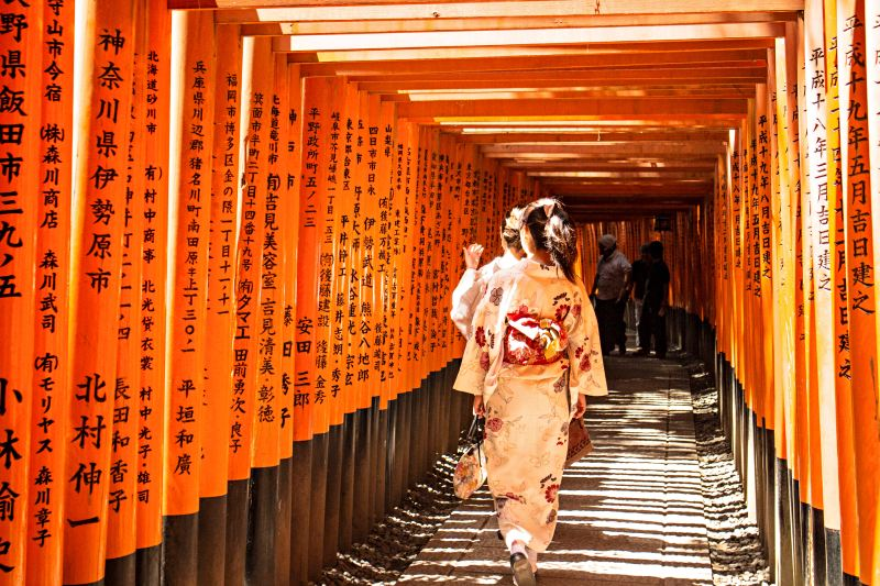 Du lịch Nhật Bản cung đường vàng mùa hoa anh đào. Giá hấp dẫn