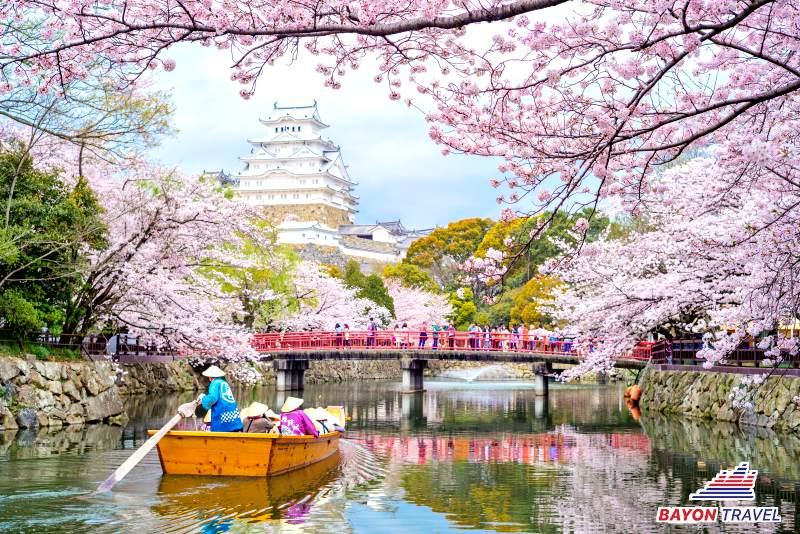 Du lịch Nhật Bản Tết mùa hoa anh đào 5N4Đ. Nhiều điểm đến, giá ưu đãi