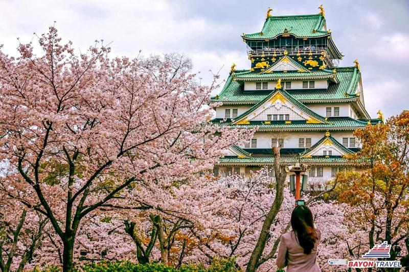Du lịch Nhật Bản mùa hoa anh đào 6N6Đ. Nhiều điểm đến. Giá hấp dẫn