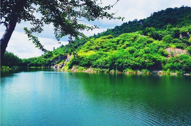 Tour du lịch Đồng Tháp Tràm Chim Hòn Sơn Phim Trường Mekong 3N2Đ