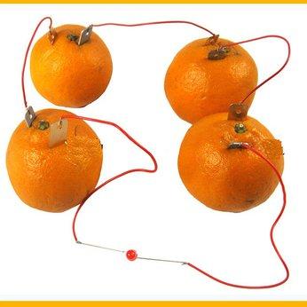 Pin điện hóa - pin quả chanh - pin trái cây - đồ chơi STEM