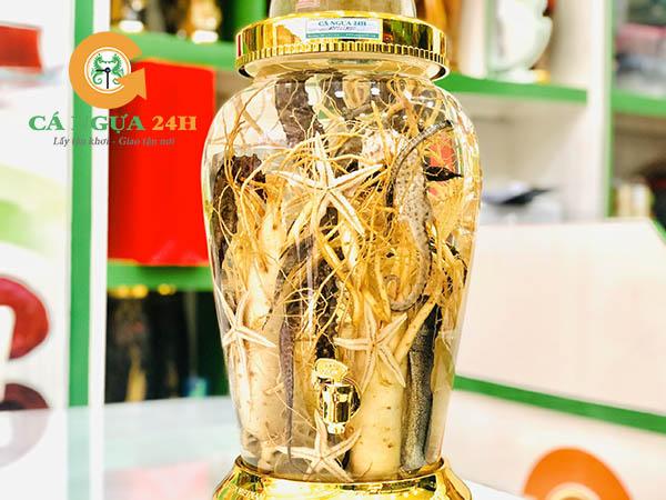 Rượu Nhân Sâm Cá Ngựa Chúa | Cường Dương Bổ Thận - Hiệu Quả Cao |