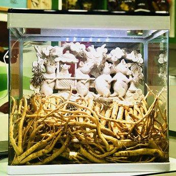 Bể Rượu Đinh Lăng Điêu Khắc 45 Lít - Đám Cưới Chuột