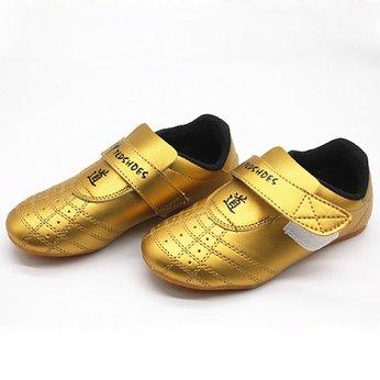 Giày Taekwondo Màu Gold / Silver